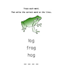 Short Vowels A,E,I,O,U Worksheets