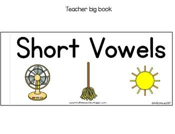 Short Vowels (CVC) Tab Book