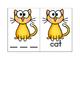 Short Vowels and cvc Practice