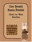 Short a  Word Family One Breath Boxes