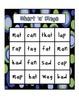 Short 'a' word Family Bingo