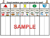 Short and Long Vowel Poster / Word Sort Mat