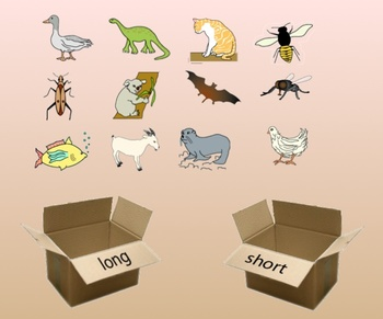 Short and Long Vowel Sorting Activity