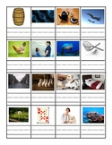 Short 'e' or Long 'e' worksheet