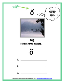 "Show the Code: Short Vowel ""o"""