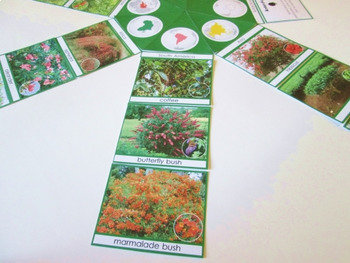 Shrubs and Bushes of the continents Montessori-inspired circle cards