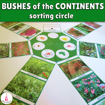 Bushes of the continents circle cards