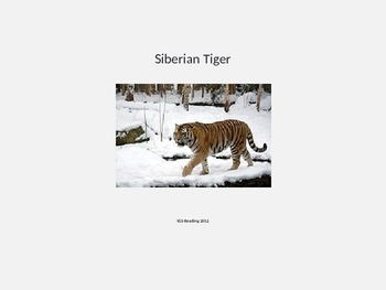 Siberian Tiger Power Point - Information Facts Pictures endangered
