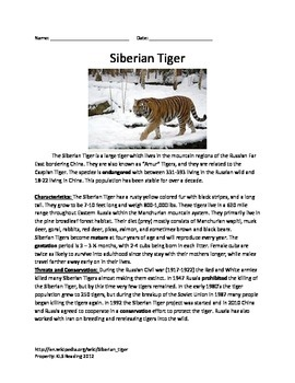 Siberian Tiger - Review Article Lesson Facts Information Questions Vocabulary