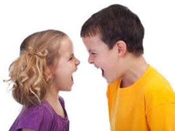 Sibling Interaction