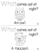 "Sight Word Activity Book: ""What"""