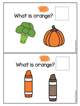 Sight Word Book: Orange