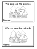 Sight Word Book - Reviews plurals, pronouns and punctuation
