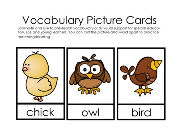 "Sight Word Book and Emergent Reader ""said"""