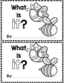 "Sight Word Books:  ""What is IT?"" Interactive reader"