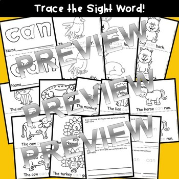 Sight Word CAN Emergent Reader