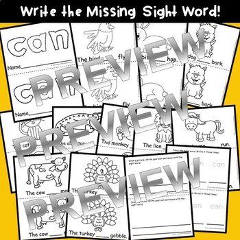 Sight Word Fluency Reader CAN