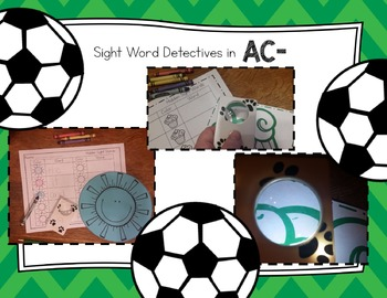 Sight Word Detectives 9