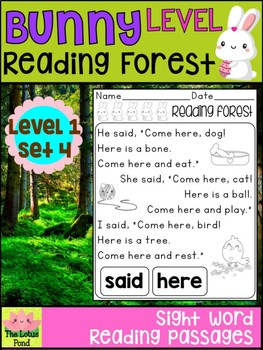 Sight Word Fluency Passages Intervention - Reading Forest Bunny Level 1 : Set 4