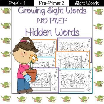 Sight Word- Hidden Words Pre-Primer 2