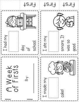 Sight Word Mini Books: Set 5