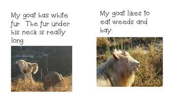 Sight Word Reader - My Goat