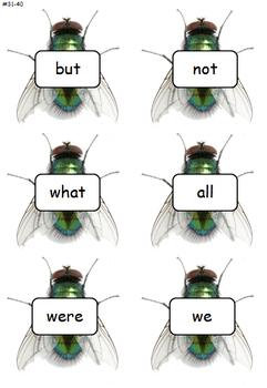 Sight Word - Splat a Fly!