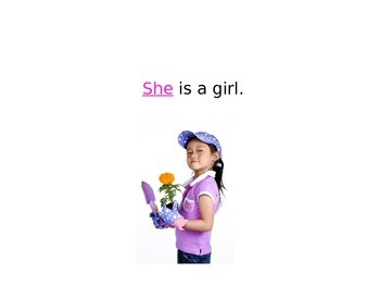 Sight Words: He and She Power Point and Worksheet