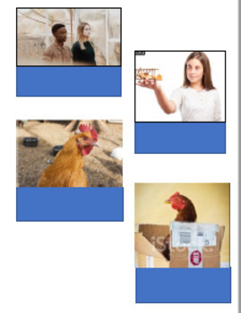 FREE Edmark Materials: Picture Phrase Matching Activities #1