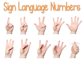Sign Language Numbers Poster by Lauren Reichenbach TpT