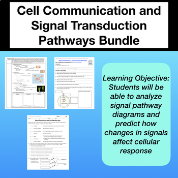 Signal Transduction and Cell Signaling Bundle