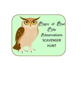 Signs of Owl Life Outdoor Scavenger Hunt for owl unit or owl pellet unit