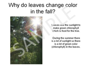Signs of the Fall, Autumn Season PowerPoint Presentation