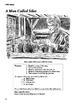 Silas Marner RL 2-3 Adapted and Abridged Novel