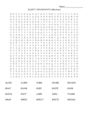 Silent Consonants Word Search