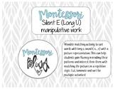 Silent E (Long U) Manipulative Work