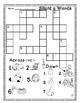 Silent e / CVCe Word Work and Word Puzzles