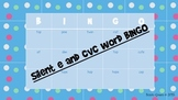 Silent e and CVC Words Bingo