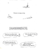 Silkworm Facts for Primary Students K-3