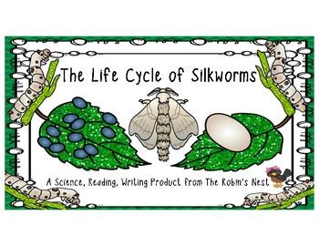 Silkworm Life Cycle