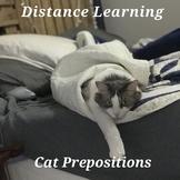 Silly Cat Prepositions - Boom Cards Speech - #Distance Learning Speech