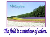 Simile and Metaphor Powerpoint Presentation (Figurative Language)