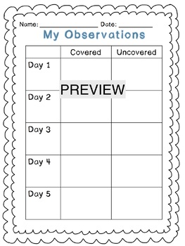 Simple Evaporation Experiment: Making Predictions and Recording Observations