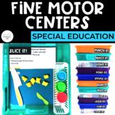 Simple Fine Motor Centers