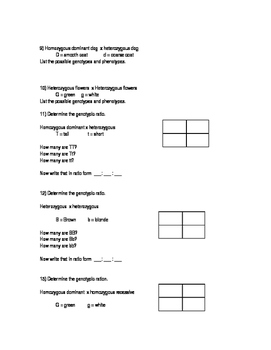 Simple Genetics Worksheet