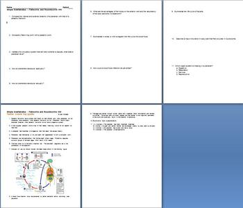 Simple Invertebrates Flatworms and Roundworms Homework Assignment