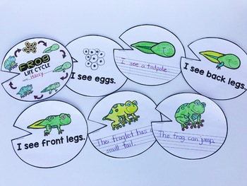 Life Cycle of a Frog Unit {3 stages or 6 stages}