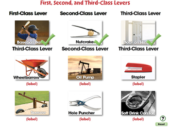 Simple Machines: First, Second, and Third Class Levers - NOTEBOOK Gr. 5-8