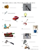 Simple Machines Test / Assessment