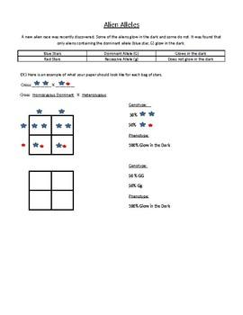 Monohybrid Crosses Worksheets Teaching Resources Tpt